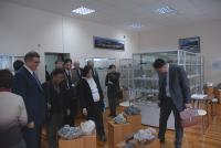 Экскурсия в геологическом музее ДВГИ