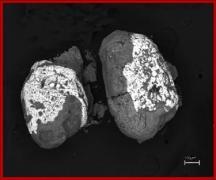 Сфероидальные обособления золота с фрагментами углеродсодержащей  оболочки из проявлений благороднометально-киноварной минерализации юга Приморского края