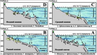 Рис. 6. Реконструкция температурных условий обитания двустворчатых и головоногих моллюсков Британской Колумбии в позднемеловое время по изотопно-кислородным данным